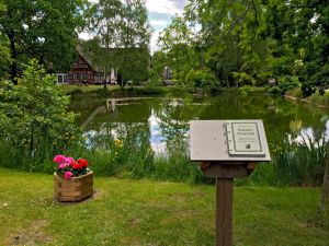 The History of the Hungerpohl at the Undeloh Village Pond
